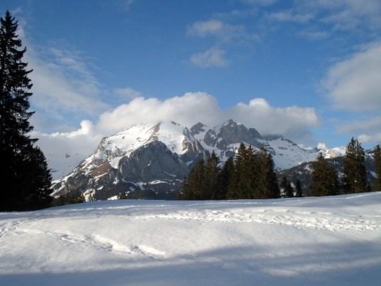 Schneeschuh 3