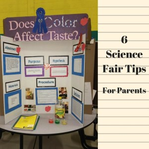 science fair tips