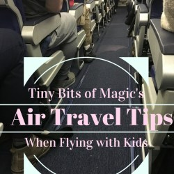 Family Flying– Air Travel Tips When Flying With Kids