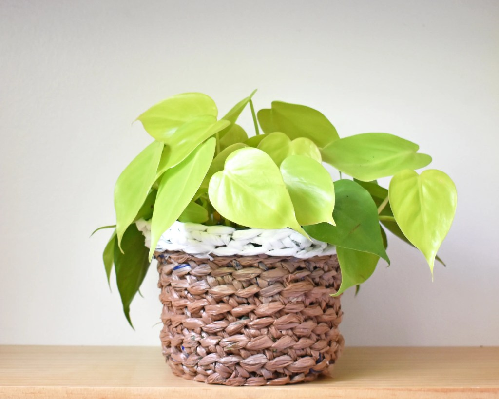 A neon philodendron plant in a crocheted plant pot cover made with brown and white plastic bag yarn. The plant is sitting on a light wooden surface.