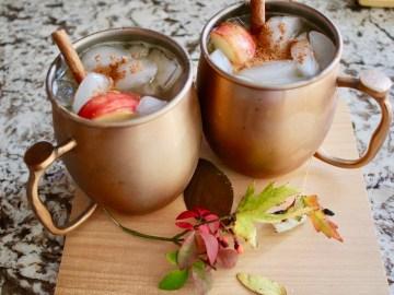 Tiny-Footprints-Blog-Caramel-Apple-Cider-Mules