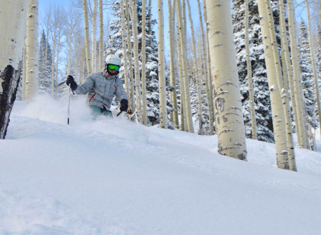 Skier skiing powder through trees at Powderhorn Resort in Mesa, Colorado
