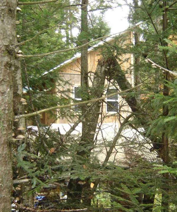 Vermont Cabin Derek Diedricksen 3