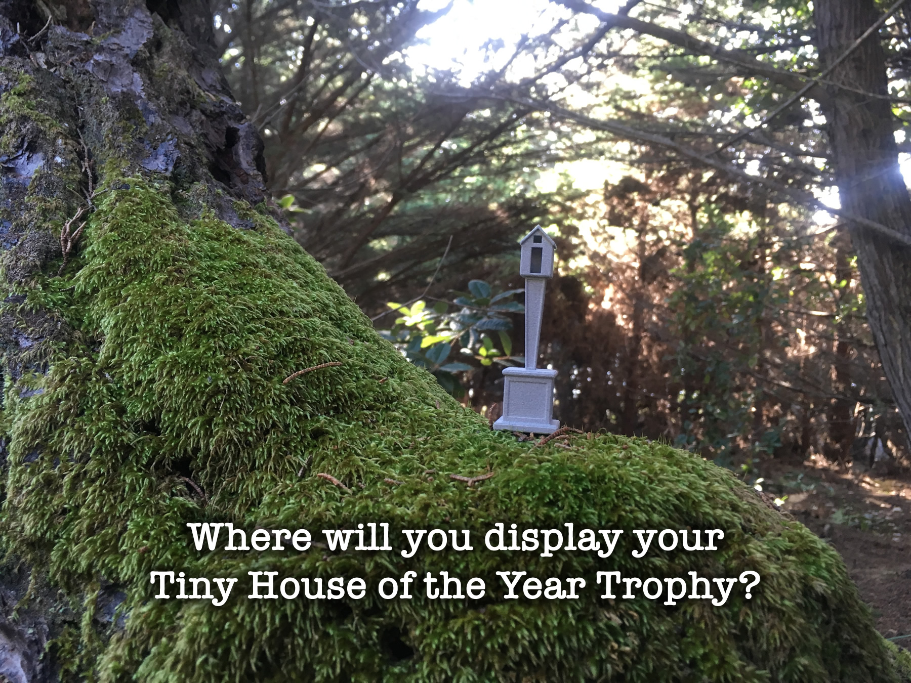 tiny-house-of-the-year-trophy-prototype-5