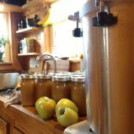 How We Can Food in Our Tiny House