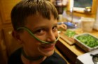Archer with a scape mustache.