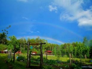 Blue Ridge Mountain magic