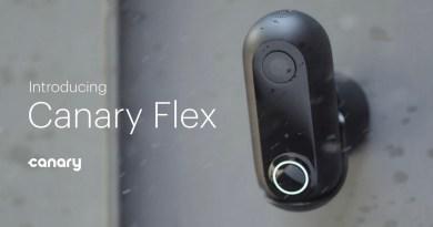 flex-01