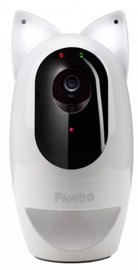 paw-90