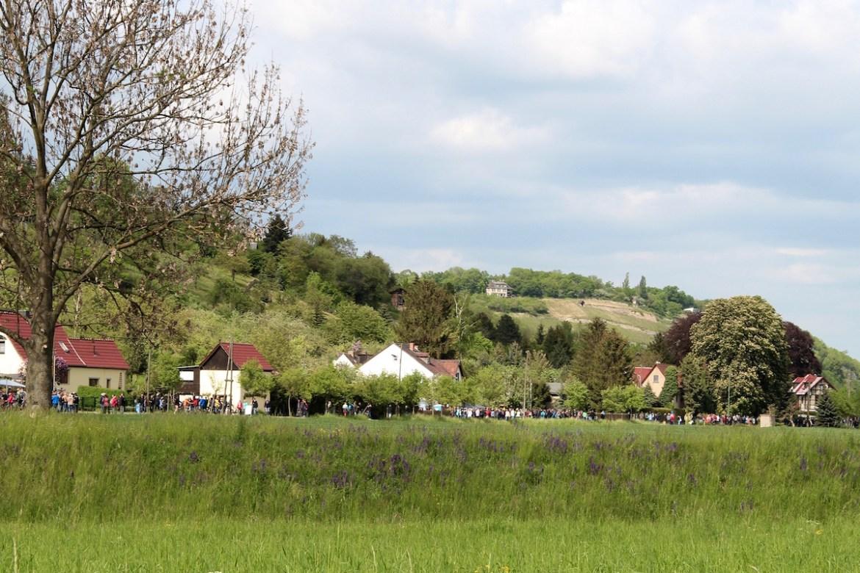 Weinmeile 2016 route