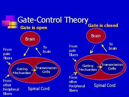 kapi-kontrol-teorisi-sistemi