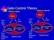 Kapı Kontrol Teorisi nedir, ne zaman bulundu?