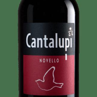 vino novello Cantalupi 2017
