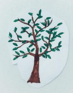disegno-albero-di-olivo