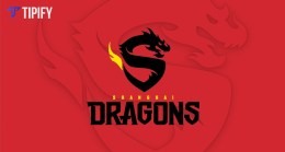 To OWL's Season 2: Shanghai Dragons Introduces New Roster