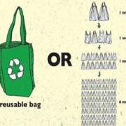 The Case for Reusable Bags vs  Plastic Bags | In the Kitchen