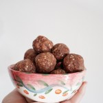 Almond Coconut Cacao Protein Balls
