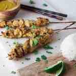 Coconut Curry Chicken Satay