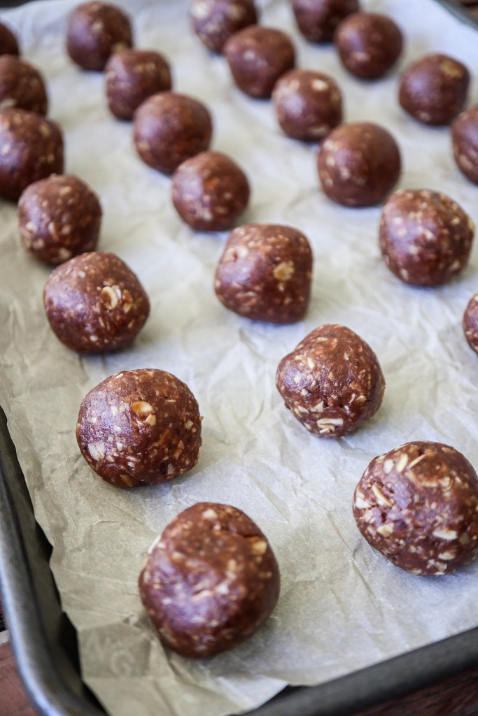 No-Bake Cookie Energy Bites