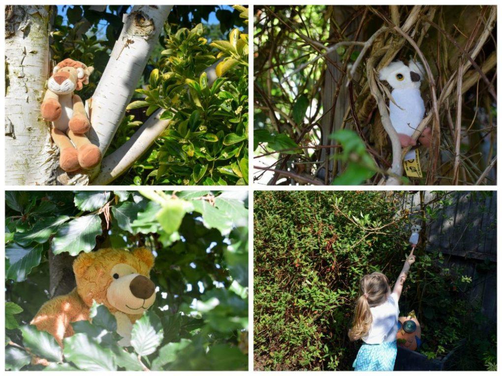 Back Garden Adventures - go on a bear hunt