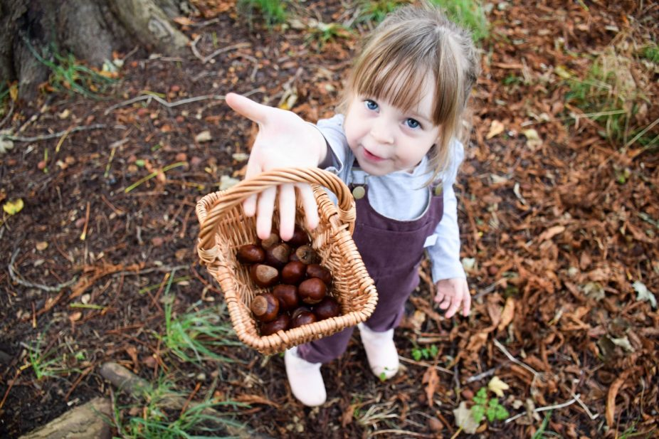Little Drop In The Ocean - conker collecting