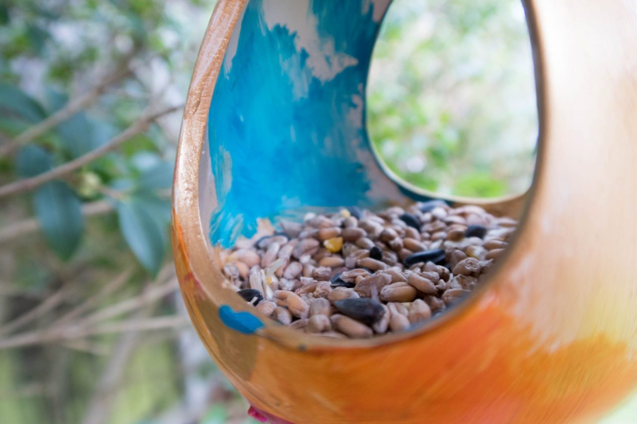Spring Preparations with Baker Ross - bird feeder close up