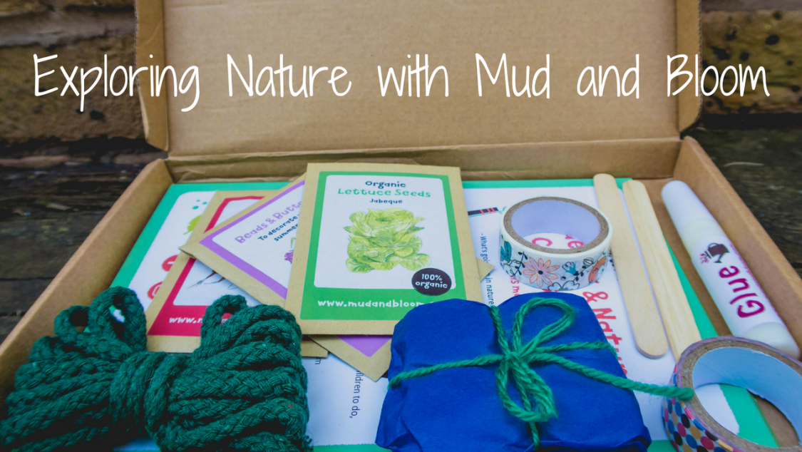 Exploring Nature with Mud and Bloom - blog post header