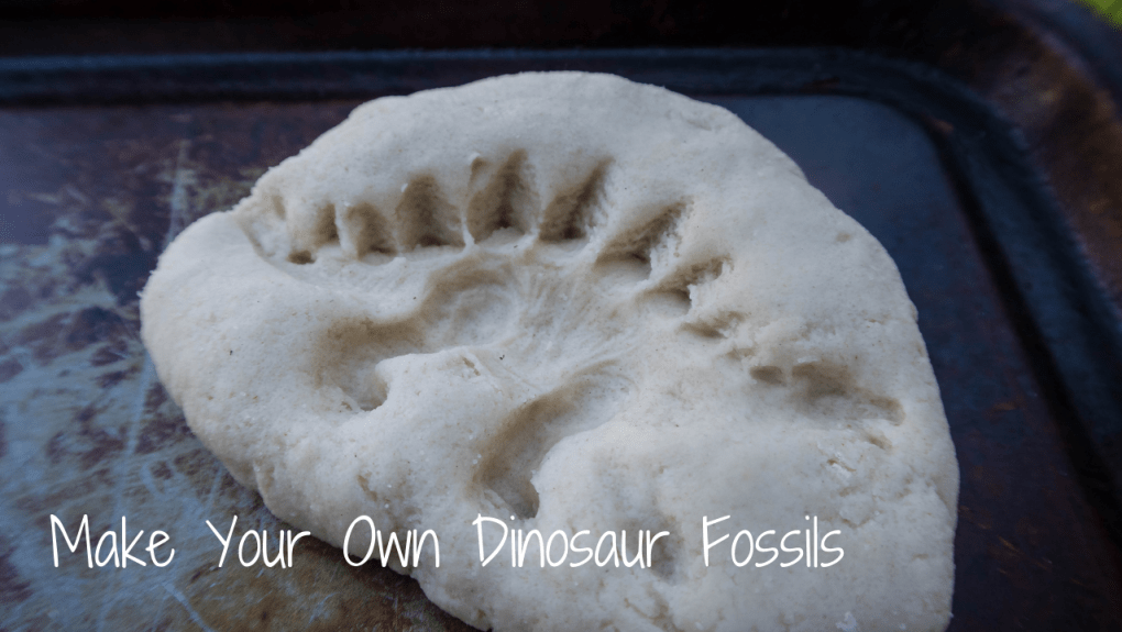 Make Your Own Dinosaur Fossils - blog post header