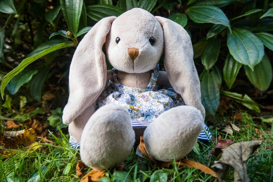 The Wonderful World of Wilberry - mrs Rabbit