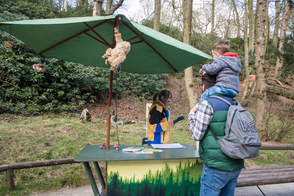 Information stations at Monkey Forest