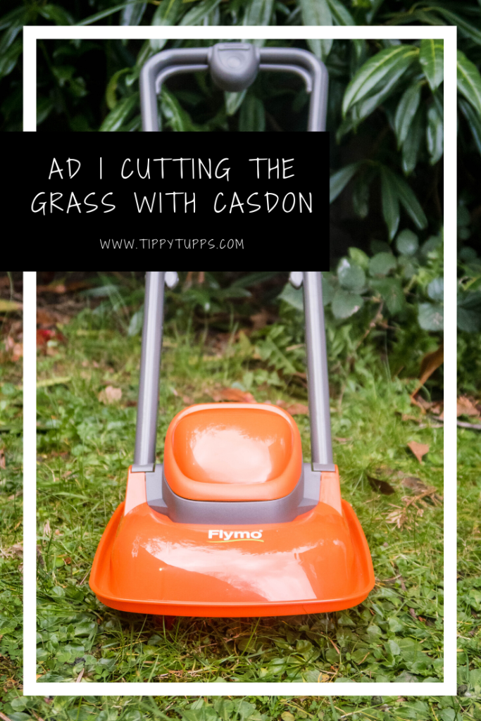 The Casdon Flymo Lawn Mower is a really sweet toy, and no doubt one they will enjoy summer after summer. What I really liked about it is its simplicity.