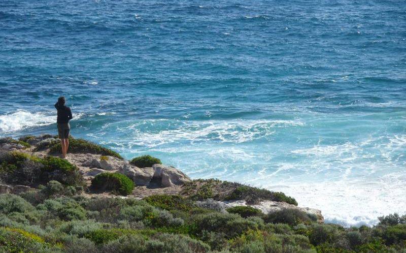 Punto panoramico al promontorio di Cape Naturaliste