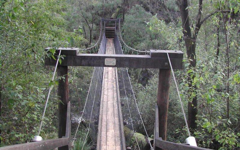 Ponte sospeso nel percorso delle Beedelup Falls