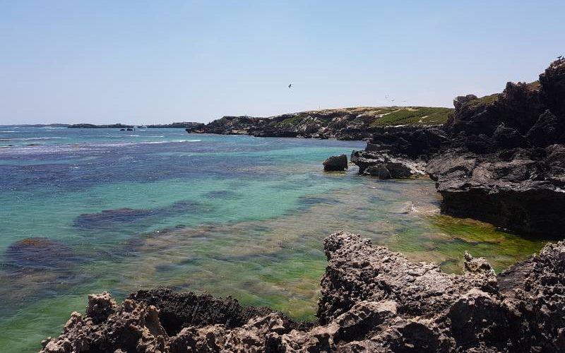 Punto panoramico su Penguin Island in Western Australia