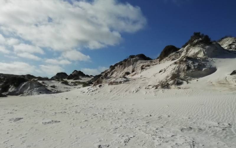 Dune di sabbia bianca nella spiaggia Thistle Cove dentro Cape Le Grand