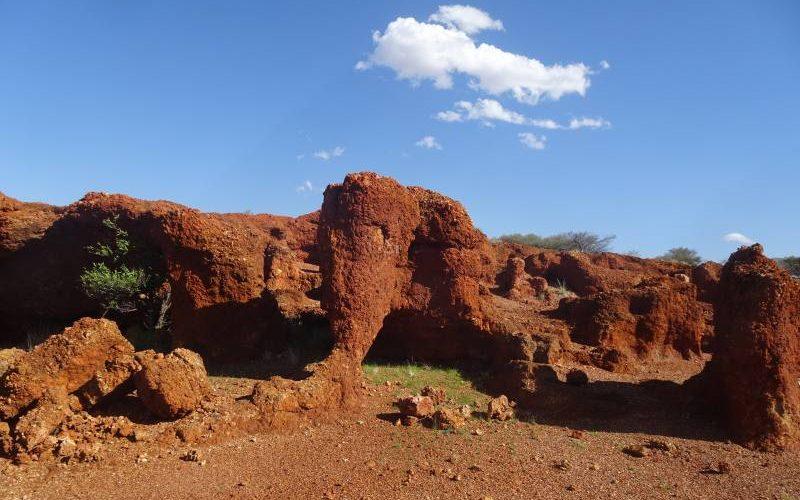 """Elefante di pietra trovato nel """"The Zoo Rock"""" nel deserto australiano lungo la Great Central Road"""