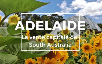 Cosa vedere ad ADELAIDE, la verde capitale del South Australia