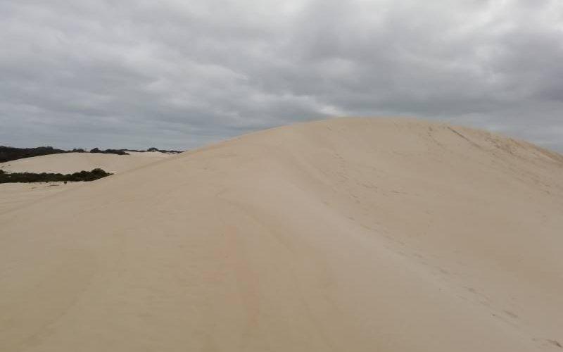 Dune del deserto Little Sahara di Kangaroo Island