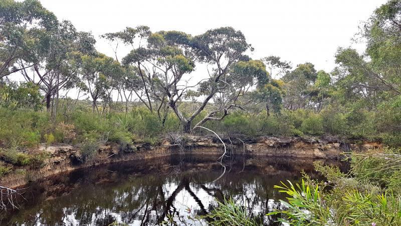 Pozze d'acqua del percorso Platypus Waterhole nel Flinders Chase