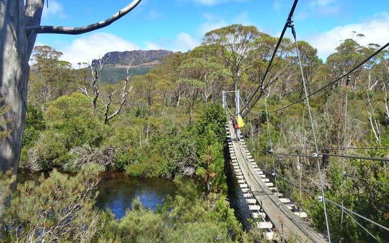 """Ponte sospeso durante il percorso di trekking """"Overland Track"""", da Cradle Mountain al Lake St. Claire in Tasmania"""