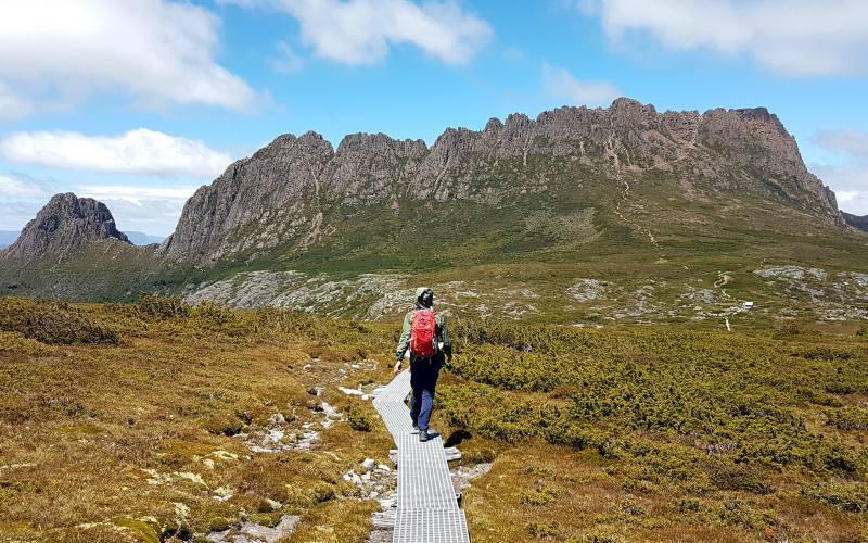 Percorso di trekking di Cradle Mountain con la cima della montagna sullo sfondo