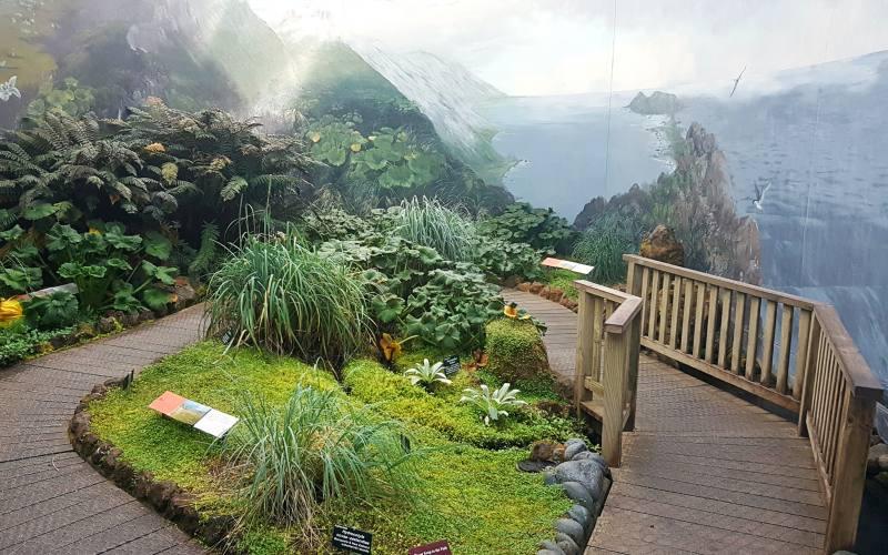 Serra per le piante dell'Antartide all'interno dei Giardini Botanici di Hobart in Tasmania