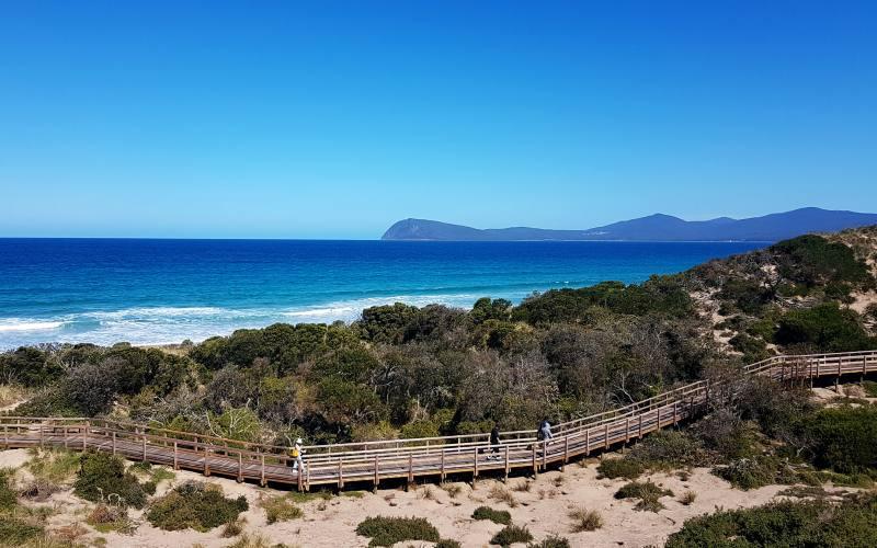 """Punto panoramico """"The Neck Lookout"""" (Truganini Lookout) con vista Riserva Naturale di Bruny Island"""