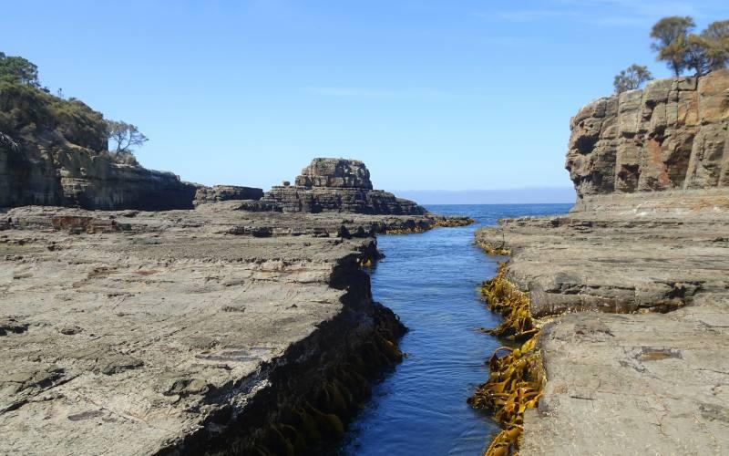 Spaccatura nella roccia nell'isolotto vicino il Tessellated Pavement della Tasman Peninsula in Tasmania