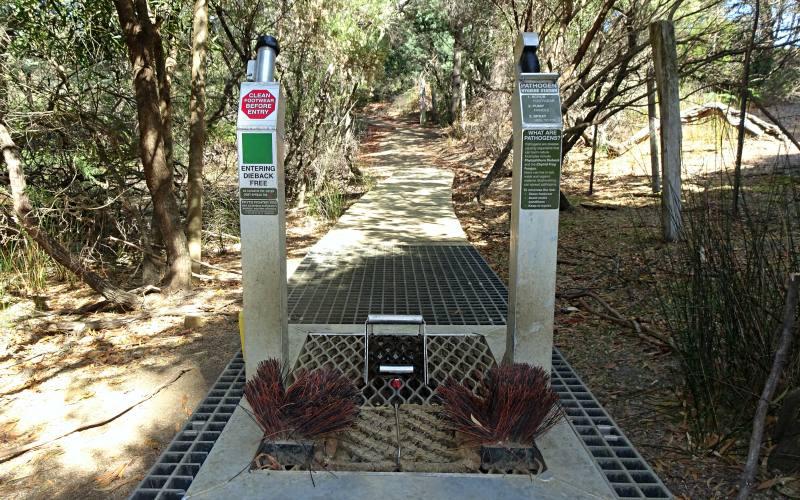 Spazzole pulisci scarpe all'inizio di ogni percorso di trekking all'interno della Tasman Peninsula