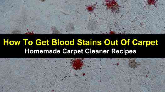 How To Remove Blood Stain From Wool Carpet Lets See