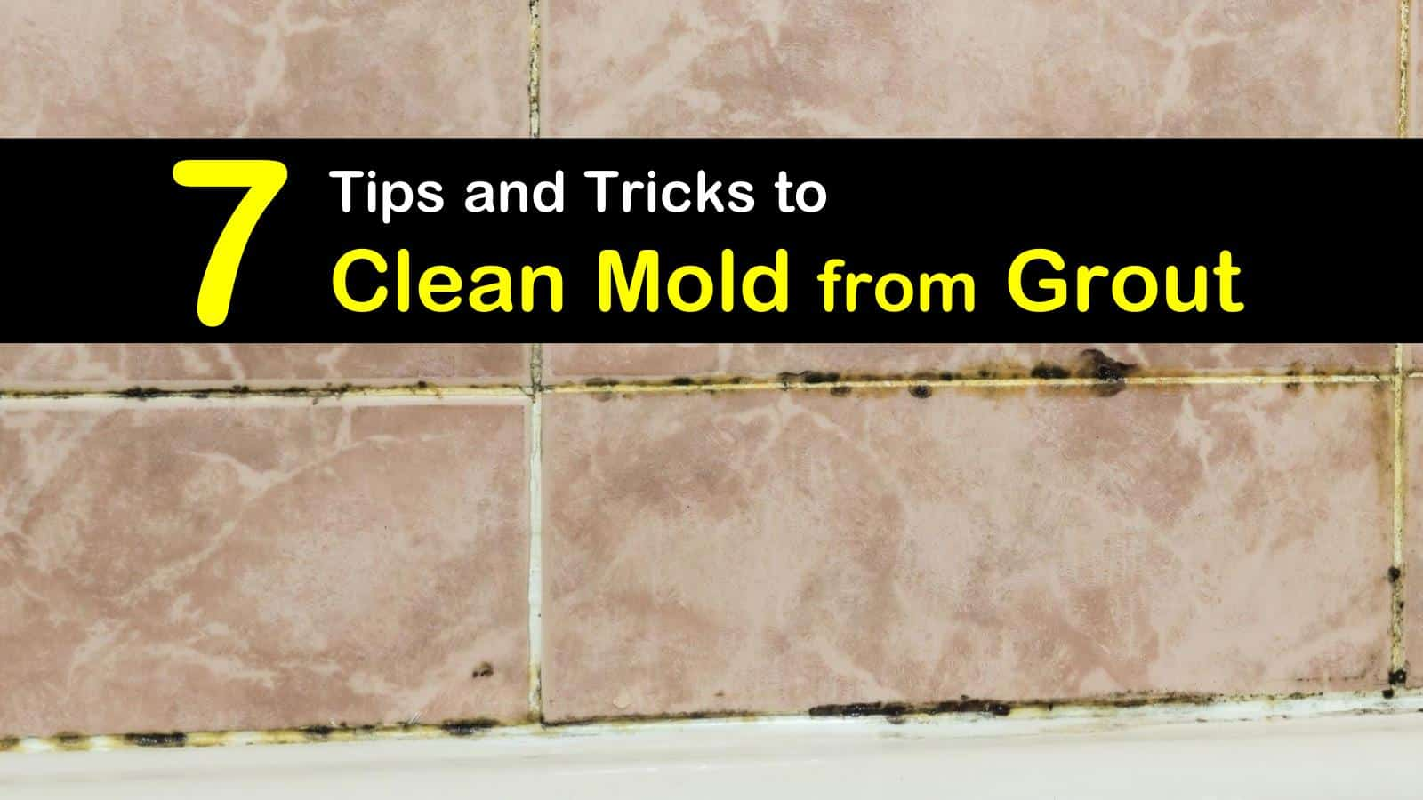 to clean mold from grout