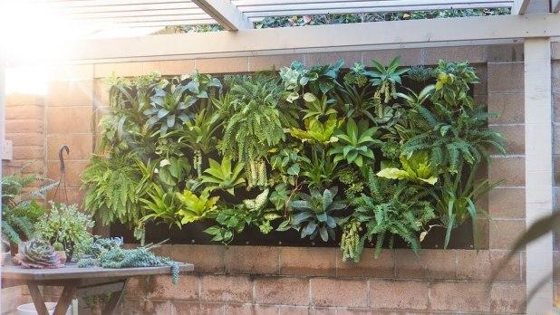 Handling a Vertical Garden
