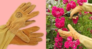 14 Best Gardening Gloves