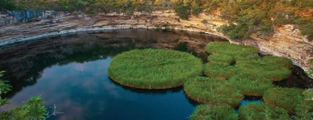 biosfera el cielo, lugar turistico de tamaulipas, mexico